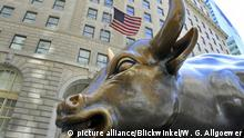 USA Charging Bull in New York