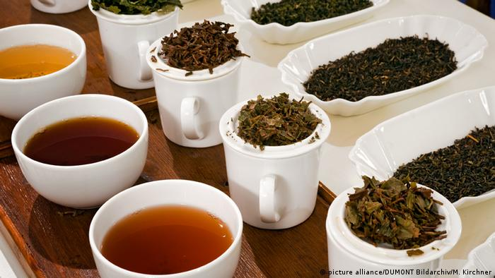 Tea sampling at the Bünting Teemuseum in Leer (picture alliance/DUMONT Bildarchiv/M. Kirchner)