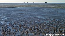 Deutschland Wattenmeer mit Hallig Nordstrandischmoor (Imago/Blickwinkel)