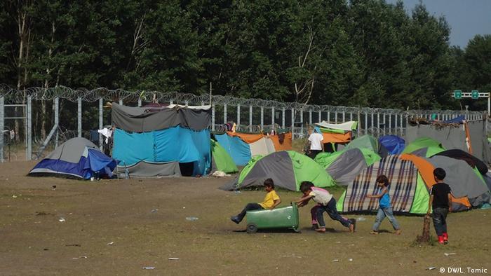 Лагерь беженцев на сербско-венгерской границе