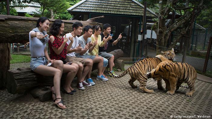 Thailand Tiger Temple