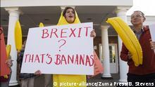 Großbritannien West Yorkshire Protest zu Brexit