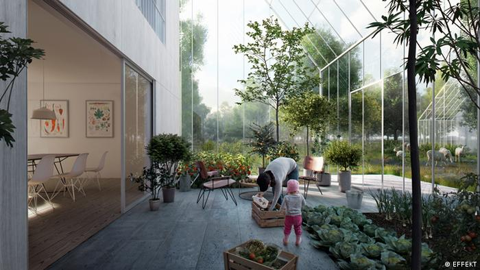 Projeto Regen Village, na Holanda