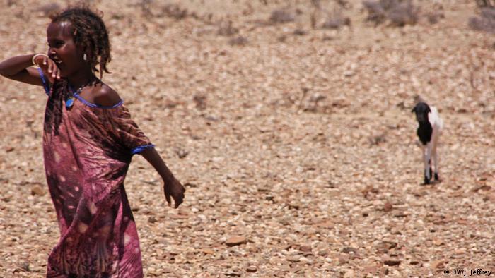 Somalia Äthiopien Viehzucht-Nomaden (DW/J. Jeffrey)