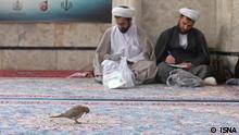 Iran Bildergalerie KW22