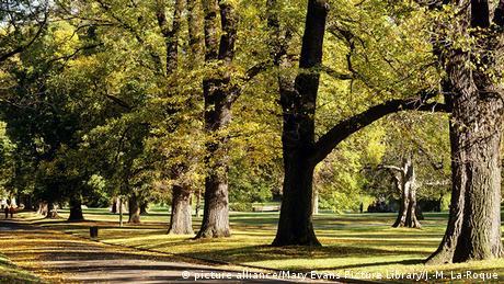Australien Fitzroy Gardens Melbourne