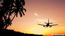 Flugzeug Palmen Sonnenuntergang