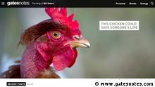 Wenn einer ein Huhn großzieht muss keinen Hunger leiden Copyright: www.gatesnotes.com