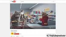 Sreenshot Youtube Netto Katzenvideo