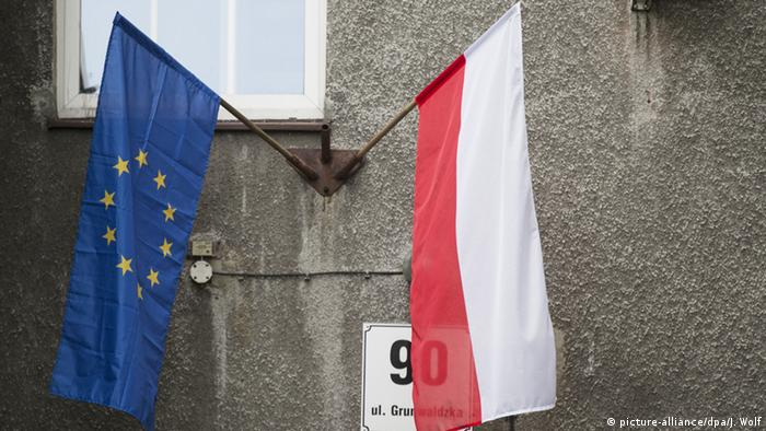 The flags of Poland and the EU