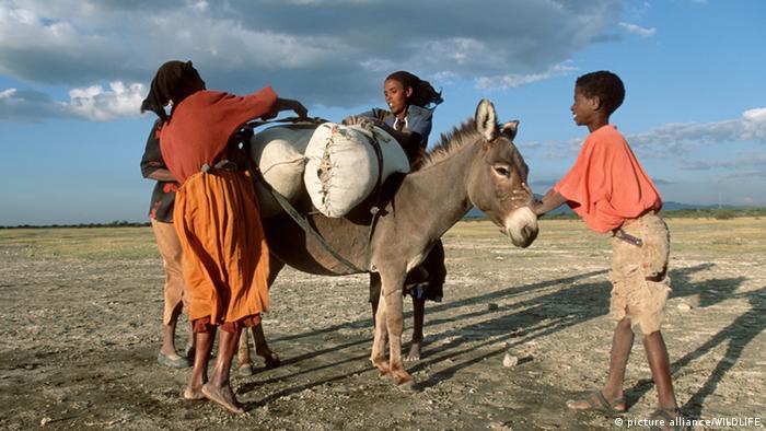 Una familia de la etnia oromo con su burro en Etiopia.