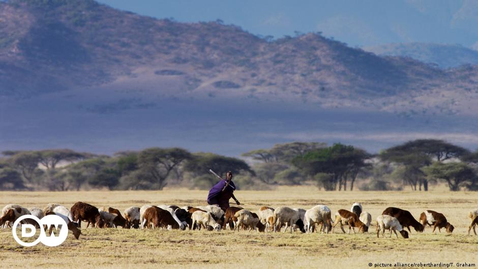 How the Masai prepare for death | Africa | DW | 29.01.2021