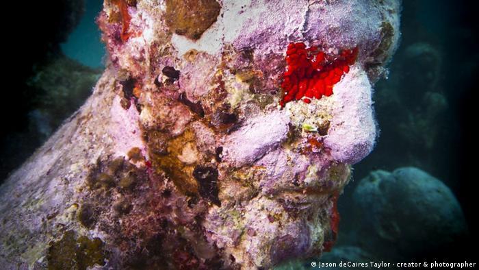 Подводная скульптура, Лансароте