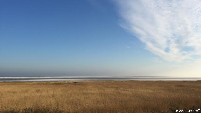 Wadden Sea, Germany (Andreas Kirchhoff)