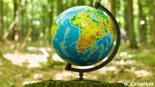 Globus Planet Erde steht auf einem Baumstumpf im Wald