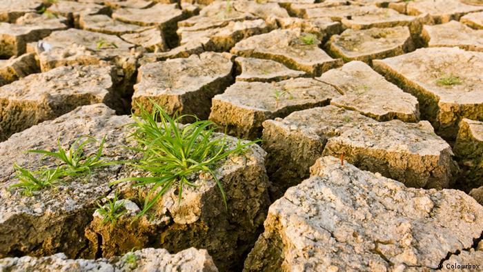 Dürre trockene Erde Gras Klimawandel