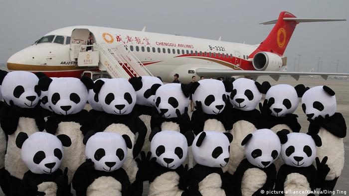 China Chengdu Pandabären aus Stoff vor Flugzeug (picture-alliance/Xinhua/Ding Ting)