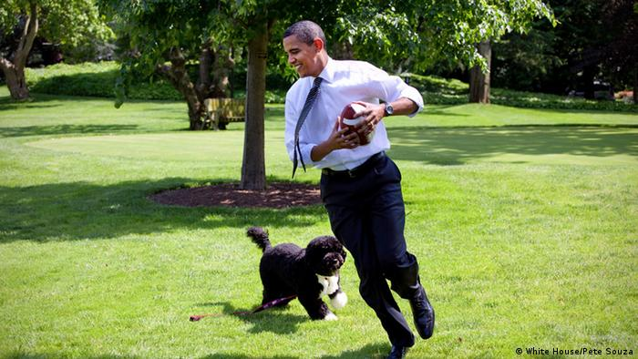 Washington White House Präsident Barack Obama spielt mit Familenhund Bo (White House/Pete Souza)