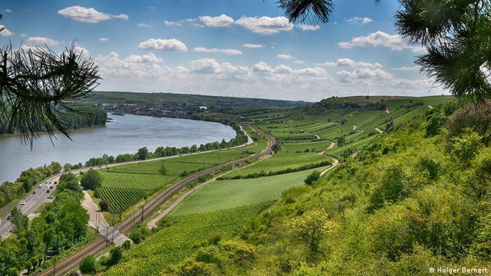 Deutschland Rhein in Rheinhessen