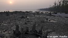 Bangladesch Sundarbans Nationalpark Mangrovenwald