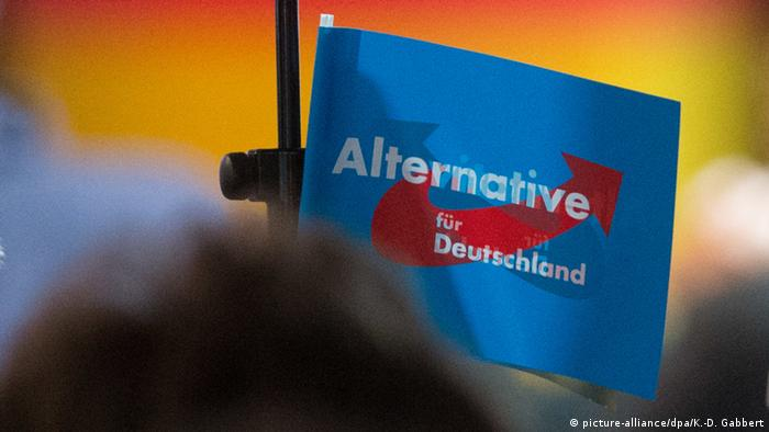 An AfD campaign flag - AfD (picture-alliance/dpa/K.-D. Gabbert)