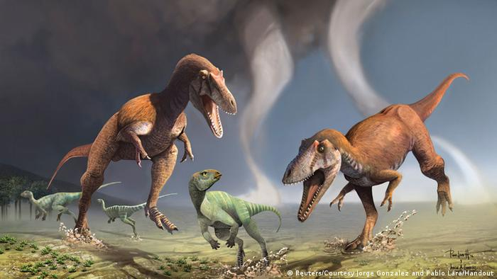 Artist impression of predatory dinosaurs hunting smaller prey (Reuters/Courtesy Jorge Gonzalez and Pablo Lara/Handout)