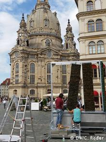 Dresden - City Tree
