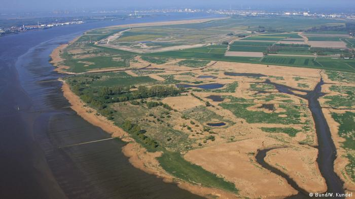 The marshland of the nature reserve Luneplate from above (Photo: W. Kundel/BUND).
