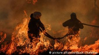 Сотрудники МЧС РФ борются с пожаром под Новгородом, 2014 год