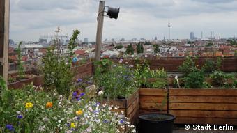 Μπαλκόνια - οάσεις πρασίνου σε πολλά κτίρια της γερμανικής πρωτεύουσας