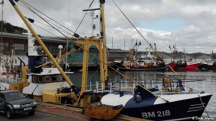 Britische Fischer begrüßen Brexit