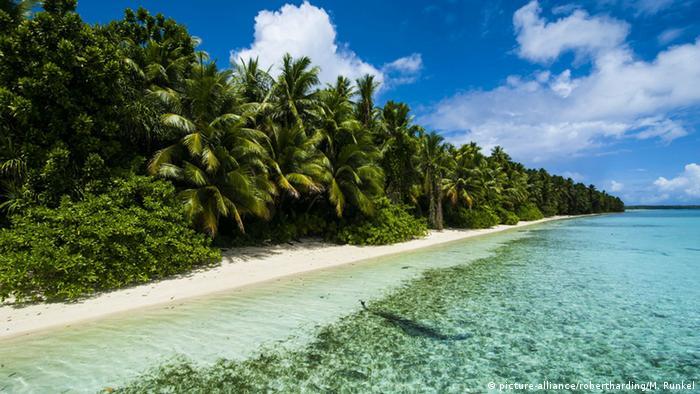 Pohnpei Mikronesien Pacifik Strand (picture-alliance/robertharding/M. Runkel)