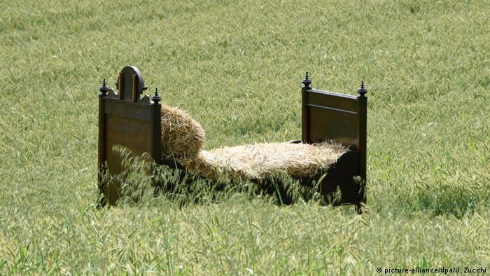 В пшеничном поле