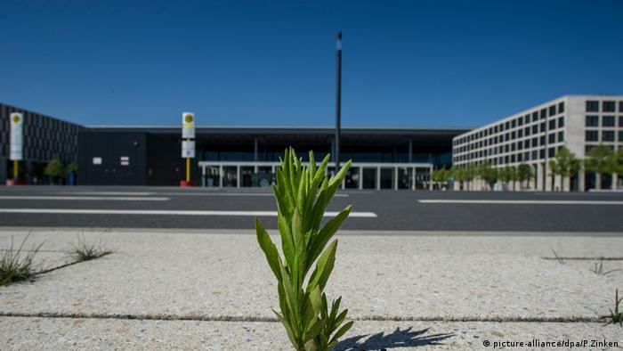 Wildwuchs am Hauptstadtflughafen Berlin Brandenburg (BER)