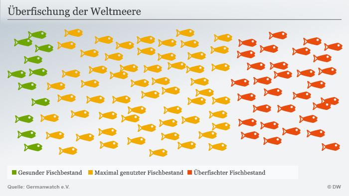 Infografik Fischbestand