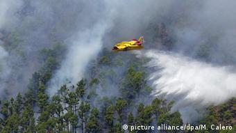 Spanien La Palma Waldbrand