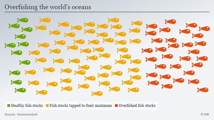 Overfishing the world's oceans - Infographics: DW