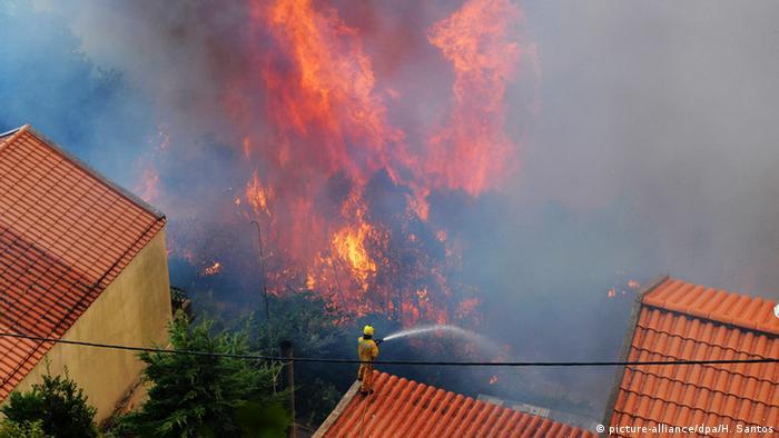 Portugal Madeira Waldbrände