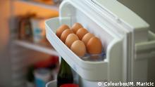 Archiv Symbolbild Illustration Kühlschrank, Gemüse, Kühlung, Lagerung, Lebensmittel, Essen, Fleisch, Lagern, Lager, Vorrat, Kühlen, Eier Colourbox/M. Maricic