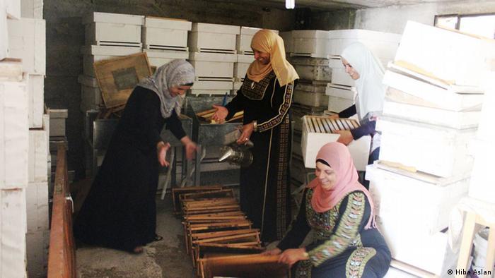 Palestina Bienen Projekt