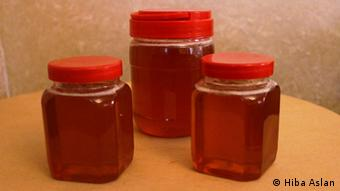 Palestina Bienen Projekt Honig