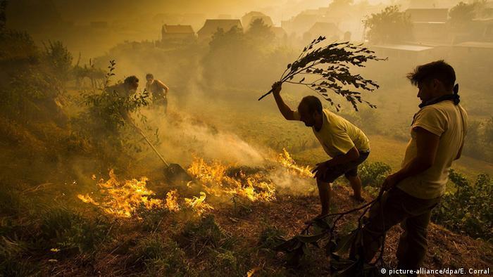 Spanien Pontevedra Brände im Nordwesten