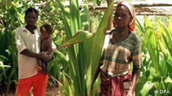 Wirtschaftliche Entwicklung in Mosambik