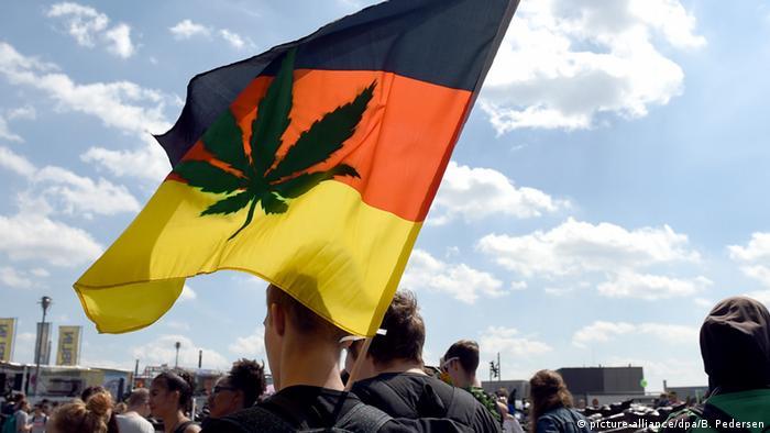 За легализацию марихуану семена конопли по украине недорого