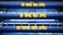 ARCHIV 2015 *** Vor einem Gebäude des schwedischen Möbelhauses Ikea stehen am 13.10.2015 in Hofheim-Wallau (Hessen) Einkaufswagen mit dem Logo des Unternehmens. Der Möbelhändler Ikea berichtet an diesem Mittwoch (14.10.2015) über ein Rekordwachstum auf seinem größten Einzelmarkt Deutschland. Foto: Fredrik von Erichsen/dpa | Verwendung weltweit © picture-alliance/dpa/F.v. Erichsen