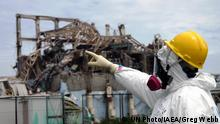World Risk Report 2016 UN-University Japan Fukushima