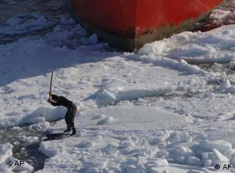 A hunter clubs a seal in Canada