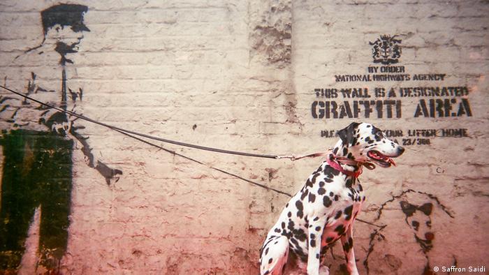 Cafe Art calendar Project, Graffiti area, Photo: Saffron Saidi.