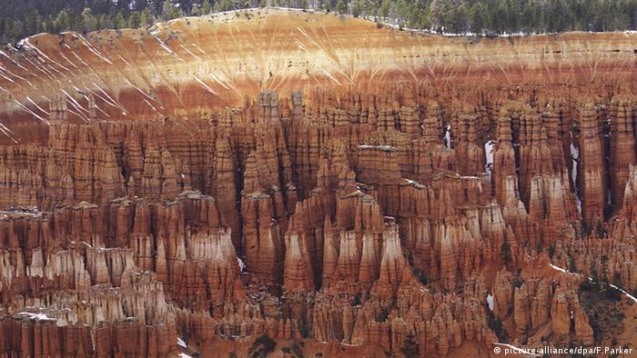د برایس کنیون (Bryce Canyon) ملي پارک د امریکا د یوتا ایالت په جنوب غرب کي موقعیت لري. د ملي پارک په حیث د دغي منطقې د تعینولو دلیل په غرونو کي د هغو راوتلو جګو تیږو او څوکو ساتل دي، چي (د جګو میلو او پایو غوندي معلومیږي.) د برایس کنیون ملي پارک د بحر د سطحي څخه د ۲۴۰۰ څخه تر ۲۷۰۰ متره لوړ دی. د دغه پارک څخه تر کرونا دمخه د کاله یو ملیون انسانانو لیدنه کوله.