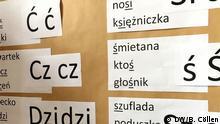Polnischunterricht in Deutschland